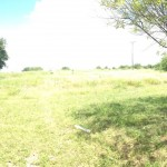 1301 Tichenor Lane Picture.02 (Medium)